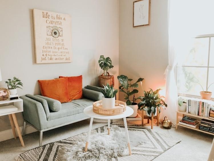 janiszewska marta-suwałki-home staging-jak urządzić wynajmowane mieszkanie-tekstylia-dywan ipoduszki-kwiaty-jasny salon -boho