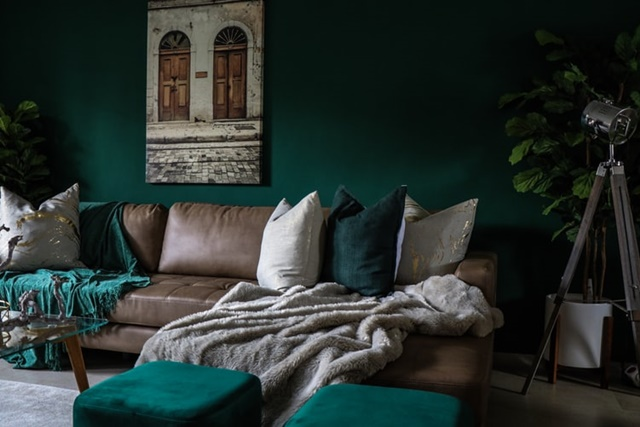 ruda chata-blog-ergonomia w mieszkaniu-funkcjonalny salon-kanapa-butelkowa zieleń-ciemne ściany-poduszka szara-szklany stolik-rośliny w salonie-lampa w rogu