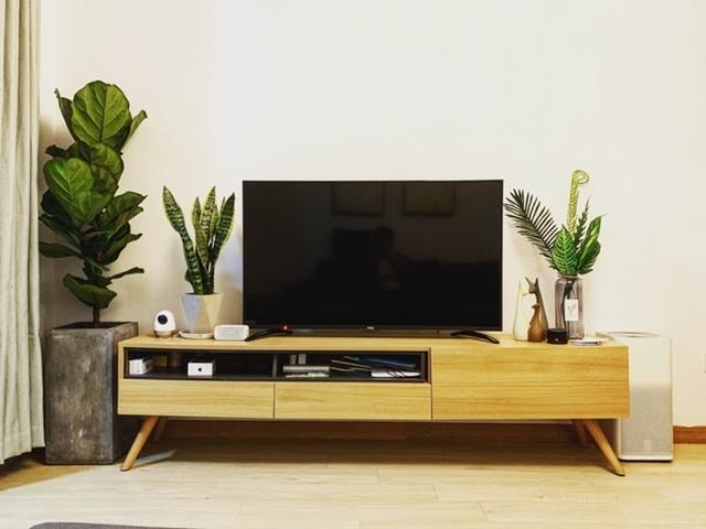ruda chata-blog-aranżacje ściany z tv-biała ściana, rośliny w salnie prze telewizorze-telewizor w salonie