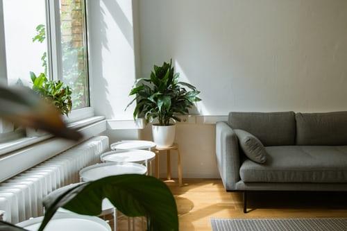 ruda chata-blog-domowe nawyki-jasny salon-rośliny-światło-powietrze-przyjazne wnętrze