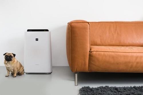 ruda chata-blog-jakość powietrza wdomu-nawilżacz powietrza-wilgotność