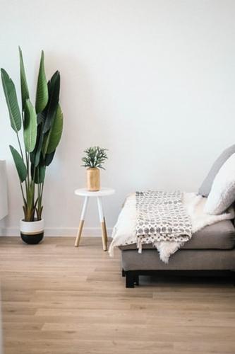 ruda chata-blog-jakość powietrza wdomu-rośliny wdomu-jasny pokój-wietrzenie