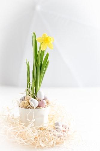 ruda chata-blog-wiosenne iwielkanocne dekoracje domu-dekoracja zżonkilem