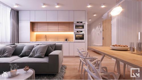 ruda chata-blog-oddzielic kuchnię odsalonu-kanapa naśrodku-biała kuchnia-jasne mieszkanie-am butor