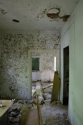 janiszewska marta-blog-jaminska.pl-kupno domu zrynku wtornego-wilgoć-pleśń naścianie
